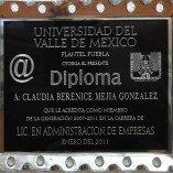 diploma taxco (2)